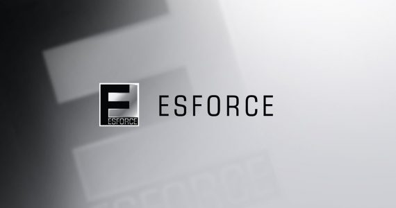 Холдинг ESforce